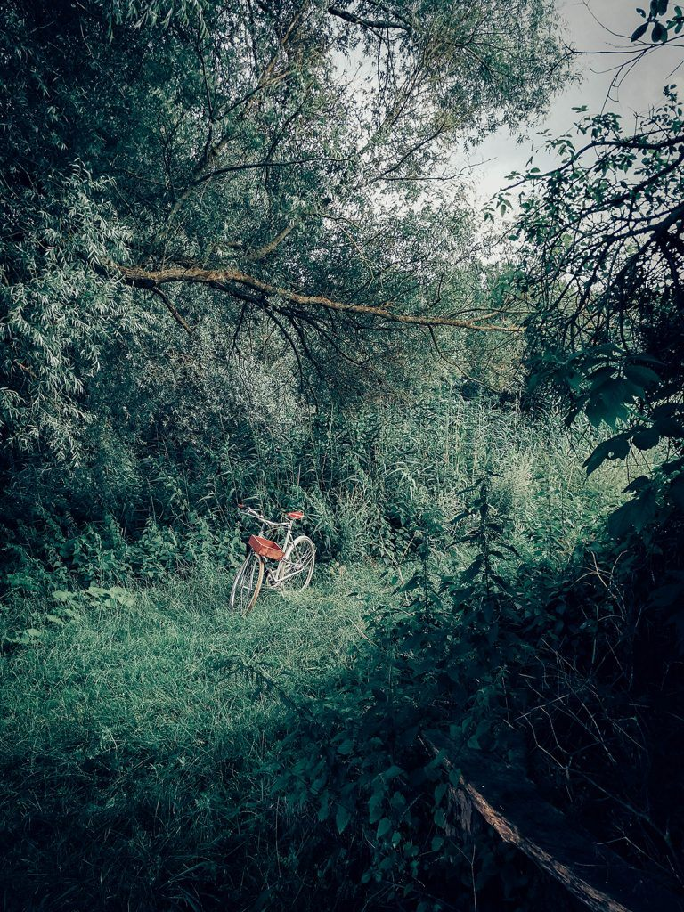 Bike in nature