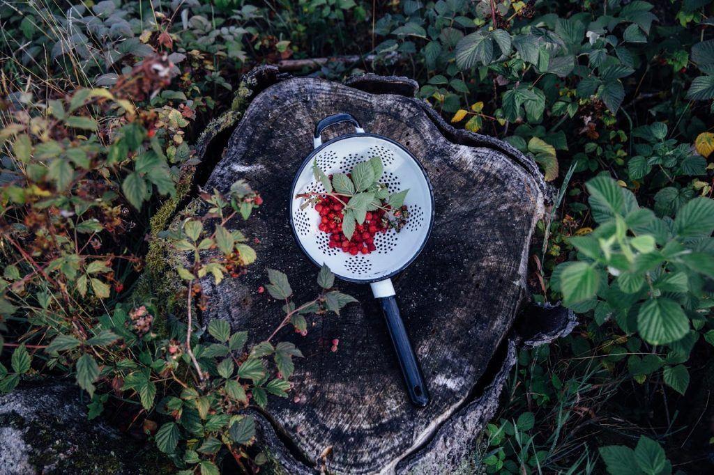 Image for Gluten-free Raspberry-Strawberry Swiss Roll in Sweden