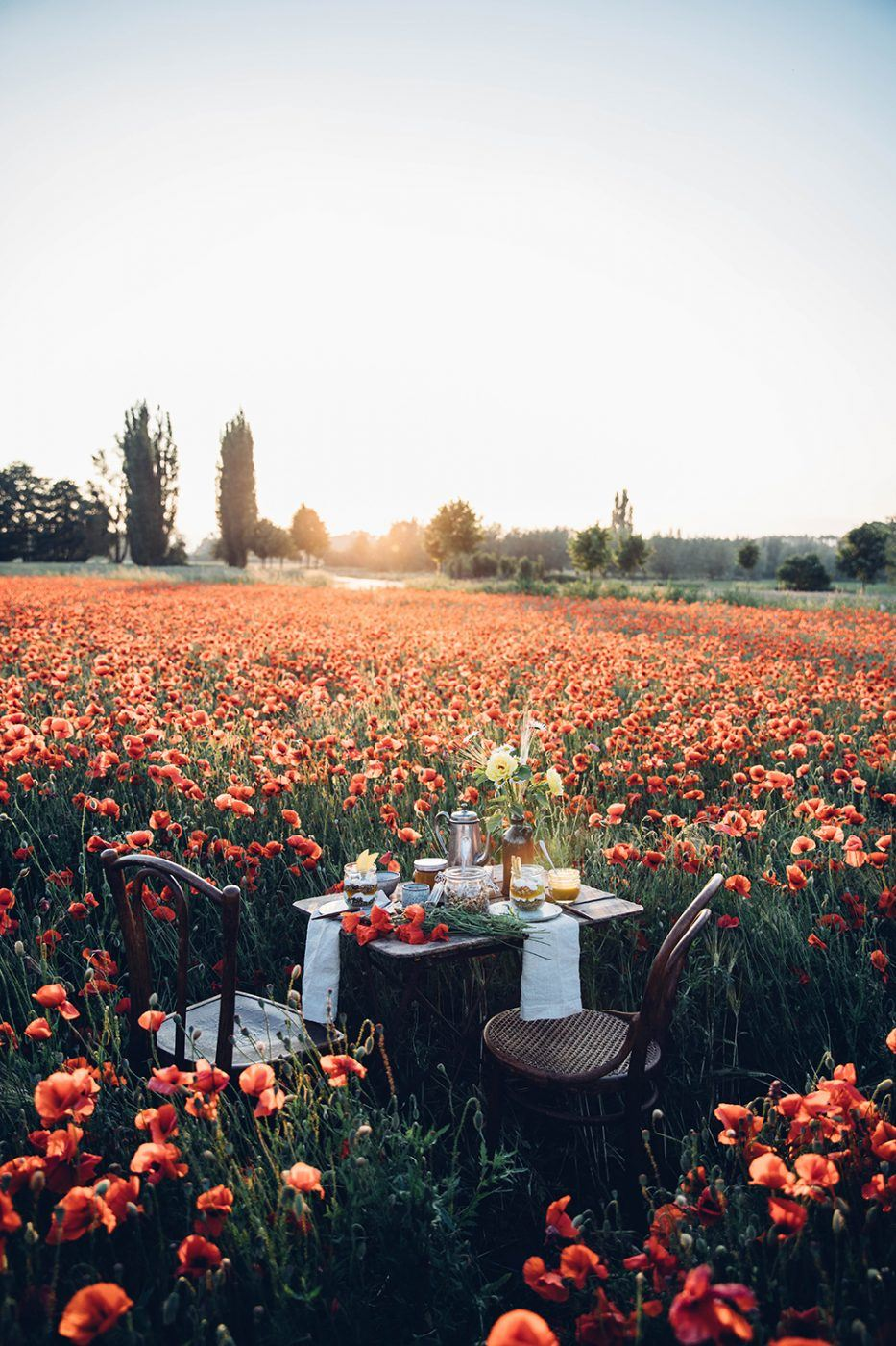 Image for Gluten-free Poppyseed Granola – A Picnic in a field of poppies